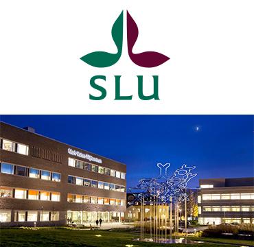 logo picture university SLU