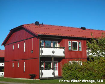 SLU accommodation
